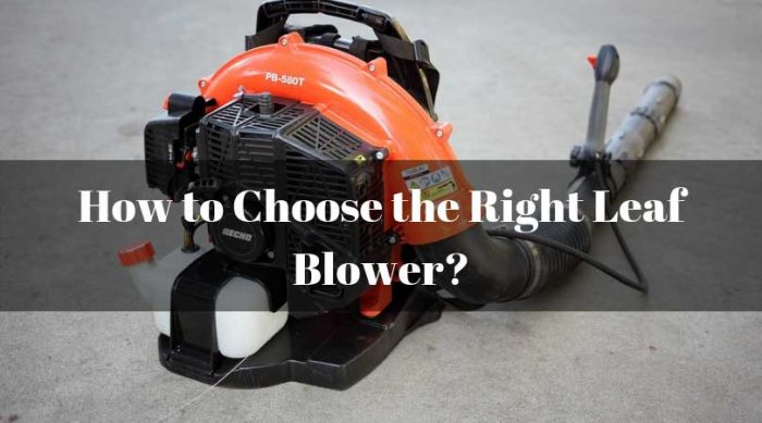 Choose-the-Right-Leaf-Blower