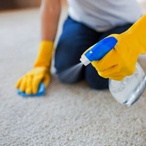 how to Remove pet hair from the carpet