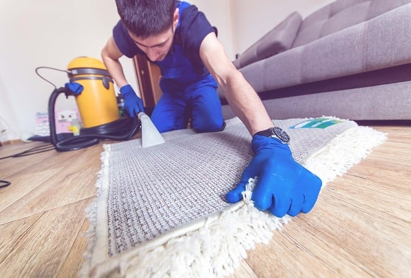 Homemade Carpet Cleaning Solution For Bissell
