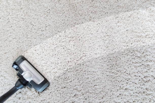 best steam mop for carpet