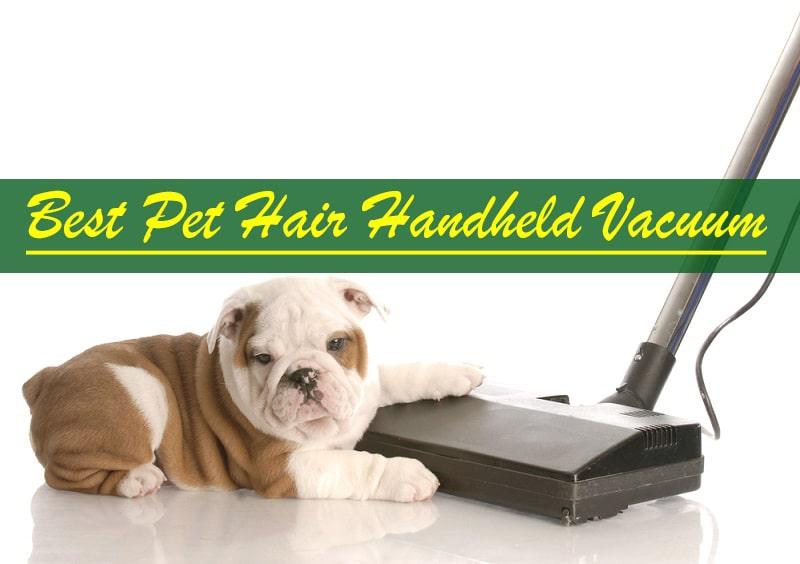 bissell pet hair eraser handheld
