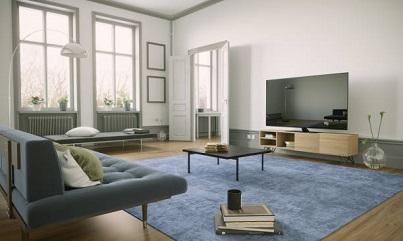 hardwood floors and carpet
