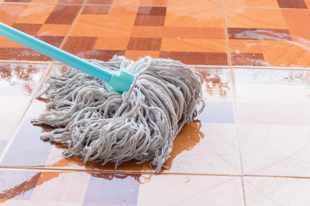 mop cleaning solution