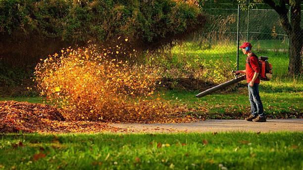 cordless leaf blower