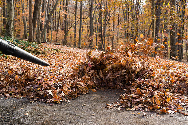 powerful electric leaf blowers